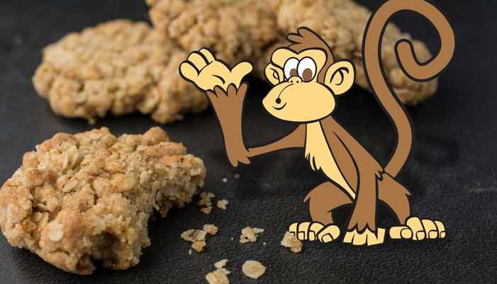 Oatmeal monkey food
